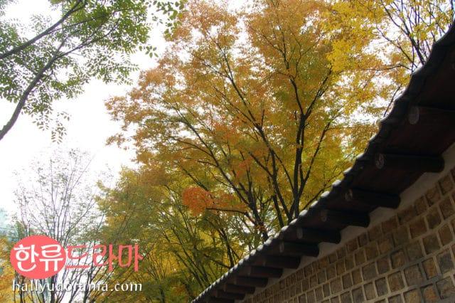 Korean autumn at Deoksogung