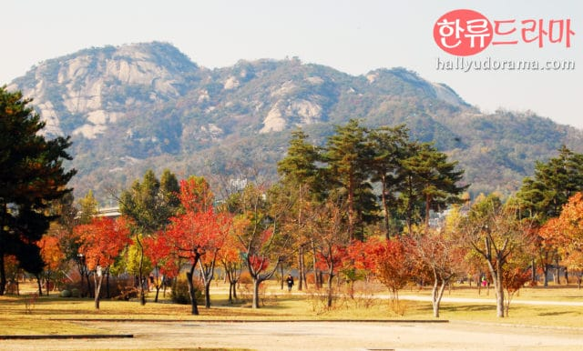 The Autumn Colors of Korea: Korean autumn at Gyeongbok Palace
