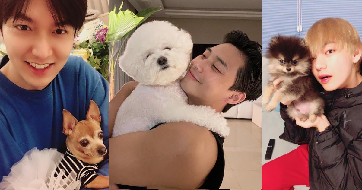 Lee Min-ho and Choco, Park Seo-joon and Simba, and V and Yeontan